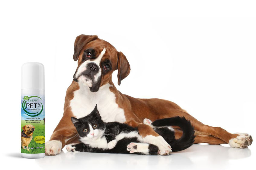 dog-cat-pain-relief-cream